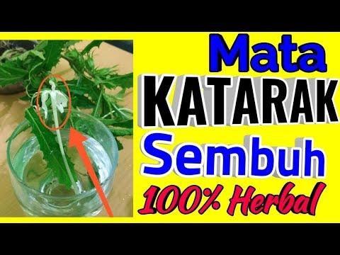 SUBHANALLAH!!!Mata Jernih,Sembuh Total Dengan Tanaman Herbal KITOLOD,Ampuh 100%