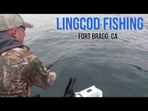 Lingcod Fishing - Fort Bragg, CA