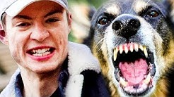 Gassi gehen mit 4 Hunden! - Als Schüler Geld verdienen l Die Lochis