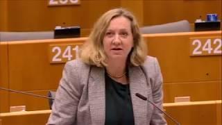 Lucy Nethsingha 13 Nov 2019 plenary speech on Children rights