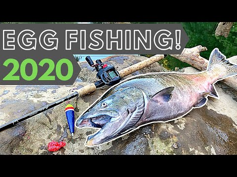 Salmon Fishing 2020 | Drifting Eggs For Chinook | 4K