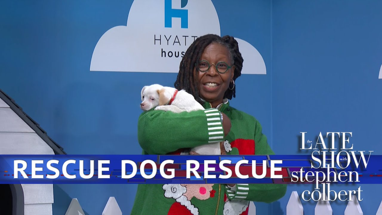 Rescue Dog Rescue With Whoopi Goldberg