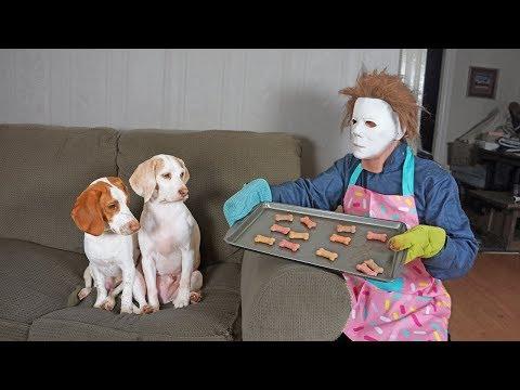 Michael Myers Befriends Cute Dogs: Funny Dogs Maymo, Penny & Potpie