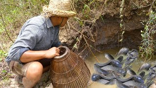 Unique Hand Fishing |  Fishing Catfish And Crab Using Hand And Bamboo Hand Trap At Flow