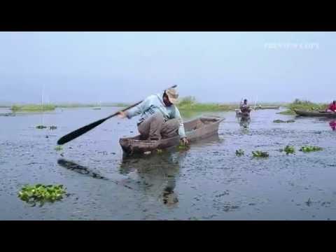 Loktak Lairambee (Lady of the Lake) - Trailer - Jio MAMI 18th Mumbai Film Festival with Star