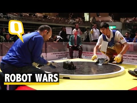 Tiny Robots Clash in a Battle of Sumo Wrestling