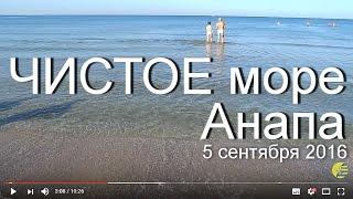 МОРЕ в Анапе 🌞 5 сентября 2016 года. Пляж Премьера - Анапские зори.(Чистая вода на море между пляжами КОЦ