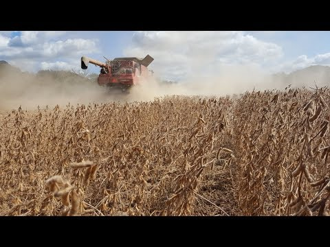 2017 Harvest Cab Cam - Eric Brooks, Athens County