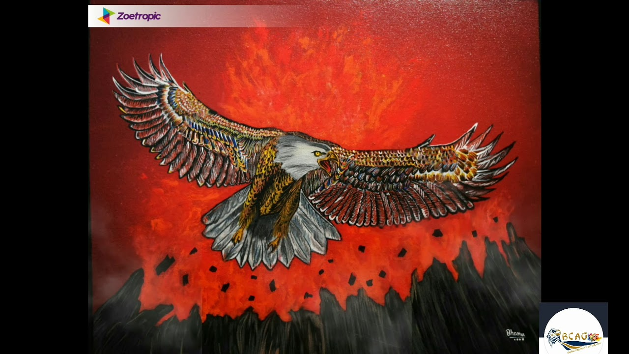 eagle zoetropic video/wisdom of the eagle/on my way ...