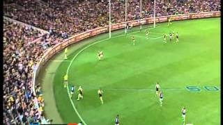 Chris Yarran sensational goal against Richmond 2012