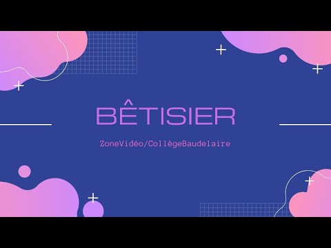 Bétisier 1 / Zone Vidéo