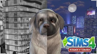 ★ THE SIMS 4 КОШКИ И СОБАКИ | ОТ РОЖДЕНИЯ ДО СТАРОСТИ | FROM BIRTH TO OLD AGE - DOG VERSION ★