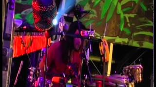Jah Will Be Done - Ziggy Marley | Live at Rototom in Benicassim, Spain (2011)