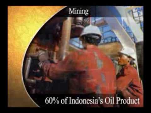RIAU PROVINCE INDONESIA - A REGIONAL PROFILE