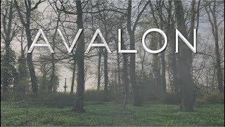 Avalon Trailer | LH Special Reports