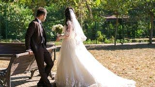 Армянская свадьба A&Y
