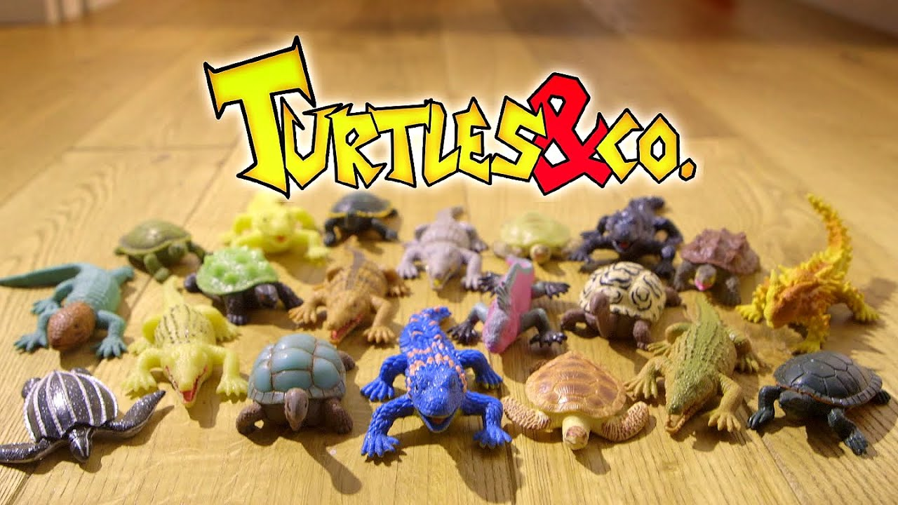 Toys And Co : Turtles co youtube