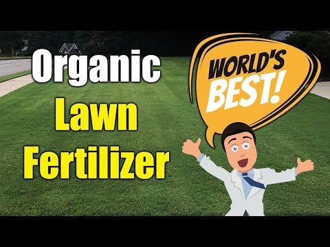 best-organic-lawn-fertilizer