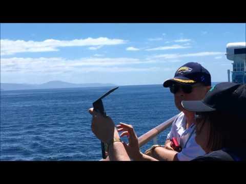 My wonderful cruise to Tasmania on the Golden Princess February 2017