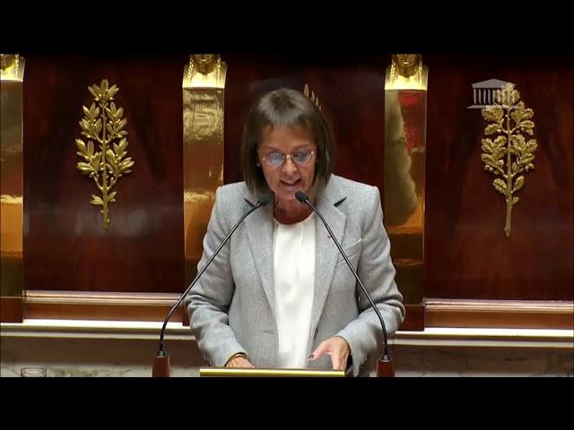 Intervention en séance, en tant que rapporteur, sur le budget de la culture pour 2019