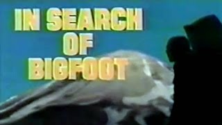 In Search of Bigfoot (1976)