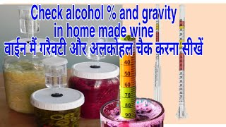 Check gravity and alcohol % in home made Wine with Hydrometer. Food Recipes