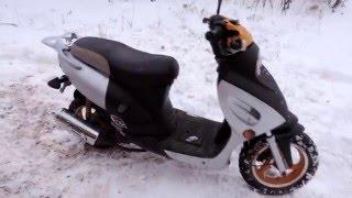 Обзор Скутера Irbis z50r [ Scooter Life]