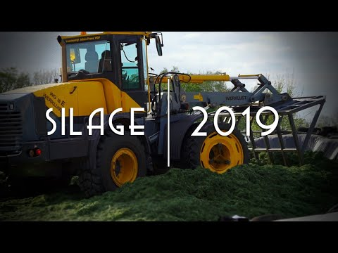Silage 2019 I First cut I Agrictulture Contractor