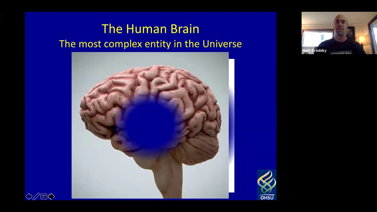 Wholistic Music And The Pd Brain Matthew Brodsky Md Youtube