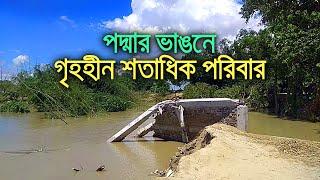 পদ্মার ভাঙনে গৃহহীন শতাধিক পরিবার   bdnews24.com