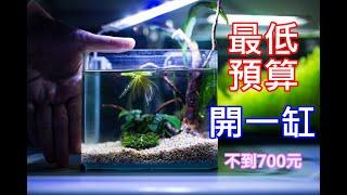 低成本小魚缸 | 都買新的!不到七百塊真的可以開一個小魚缸養東西嗎? | low budget fish tank | can it work ?