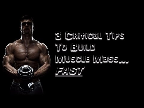 3 Refueling Strategies for Muscle Building