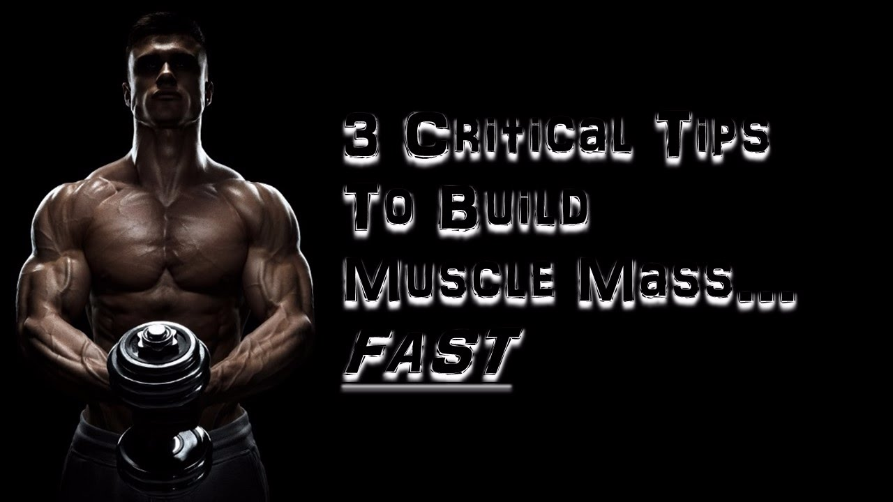 3 critical tips to build muscle mass fast muscle building blueprint 3 critical tips to build muscle mass fast muscle building blueprint neil onova strongerleaner malvernweather Images