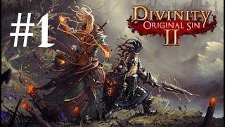 Tradotto in italiano finalmente = Gameplay ITA - Divinity Original sin 2 - Episodio #1
