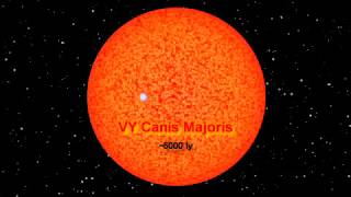 Scale of Earth, Sun, Rigel, and VY Canis Majoris. [full zoom at the end]