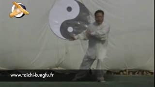 Chen Shi Tong - Taiji (Taichi) style Chen
