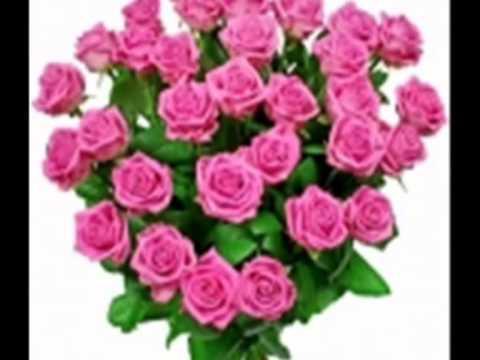 Piękne Kwiaty Dla Przyjaciół Xvid Youtube