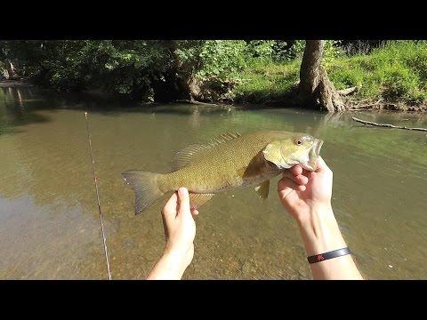 FISHING MY CHILDHOOD CREEK