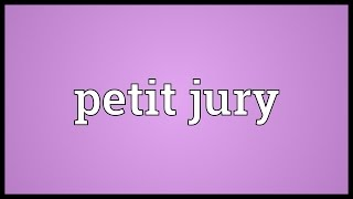 Petit jury Meaning