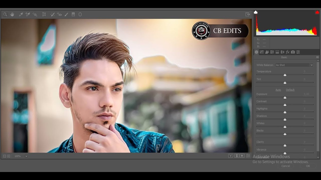 How to enable | download | install camera raw filter in photoshop cs6