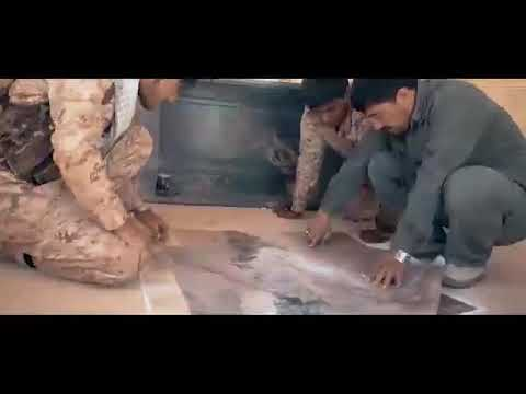 Liwa Fatimiyoun  (Afghan shia militia in Syria)