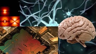 Квантовые компьютеры и мозг  Часть 1 - Илья Мартынов