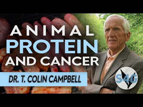 Dr. T. Colin Campbell Explains 'High Quality' vs 'Low Quality' Protein