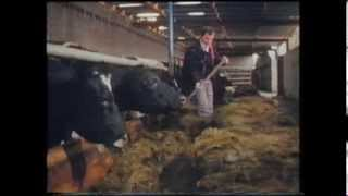 Farming in County Monaghan 1985