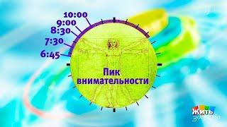 Жить здорово! Биоритмы. Как работают внутренние часы? (25.10.2017)