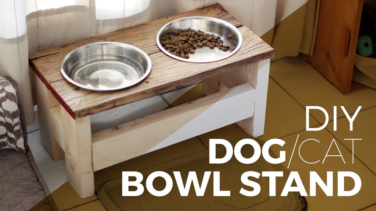 How to make a Dog Bowl Stand - DIY || or Cat || - YouTube