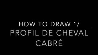 how to draw 1/ profil de cheval cabré