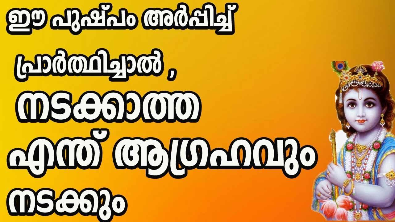 ഈ പുഷ്പം അർപ്പിച്ചുകൊണ്ട്  പ്രാർത്ഥിക്കുകയാണെങ്കിൽ ,നാളെ എന്ത് ആഗ്രഹവും സാധ്യം malayalam astrology