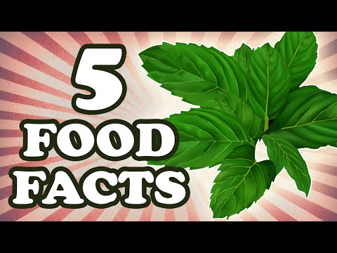 Why Does Mint Taste Cold?.. And 4 Other Food Facts