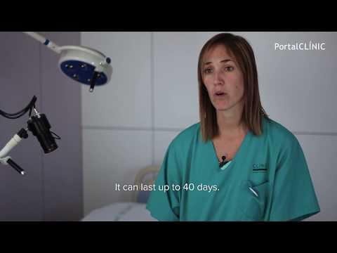 Pregnancy and Childbirth   PortalCLÍNIC